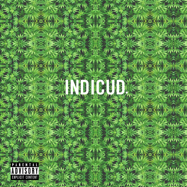 Kid Cudi Indicud Album Artwork