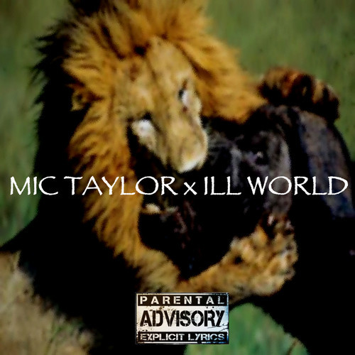mictaylor.illworld