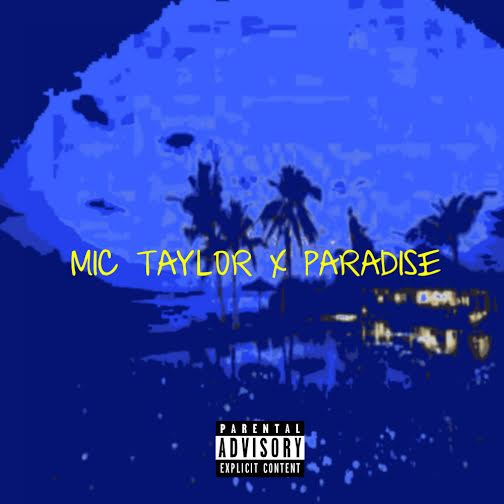 mictaylor.paradise